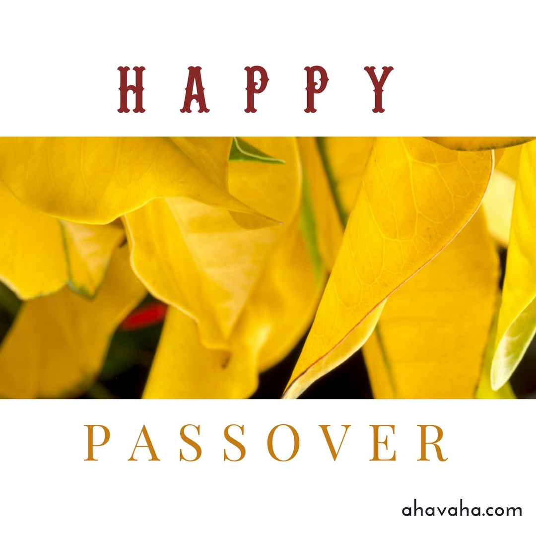 Happy Blessed Passover multicolored greeting cards square image 1