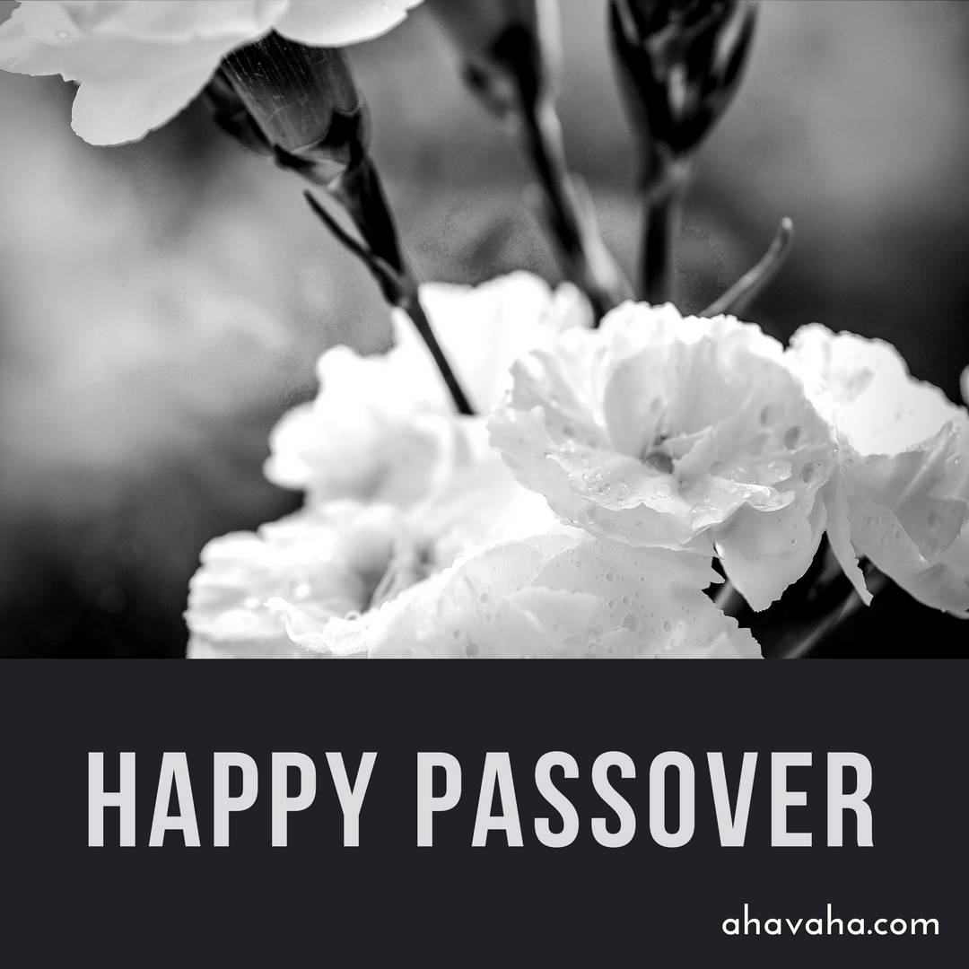 Happy Blessed Passover multicolored greeting cards square image 8