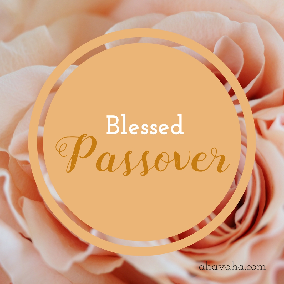 Happy Blessed Passover Pesach Greeting Card Square Image 12